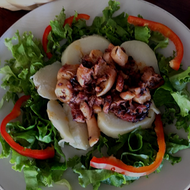 incredible grilled octopus in montezuma CR