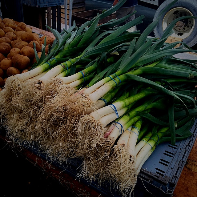 Picked up these stalks of fragrant spring garlic at Daag plaza farmers market! #eatingfresh #Food...
