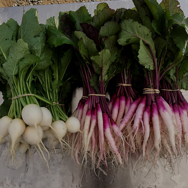 Don't get rid of your turnip greens! Chop them off of your turnips before storing in the fridge i...