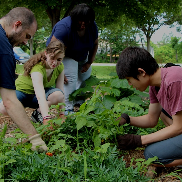 In case you're looking to get into a community garden in NYC, here is a cool little locator. #gro...