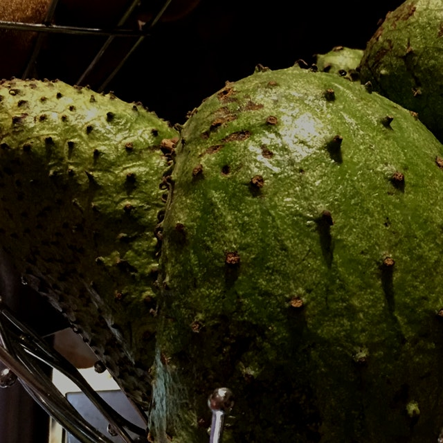 Jamaican soursop is great Just had soursop juice with breakfast  Was fantastic   Never heard of S...
