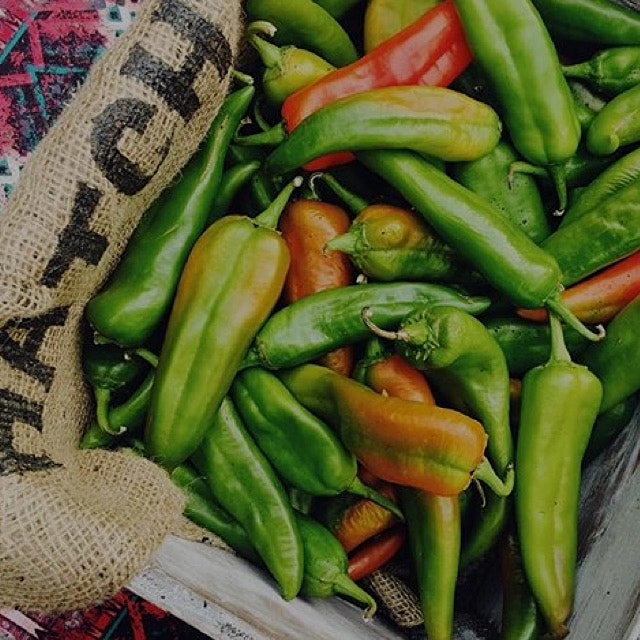 """Roasted New Mexico Hatch Green Chile and Red Chile."" @ziagreenchileco  presented recently at Foo..."