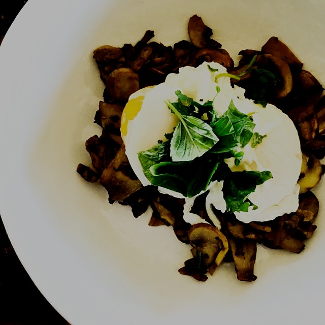 Made a speedy breakfast with @akhilg2002 of mushrooms topped with poached eggs and homegrown basi...