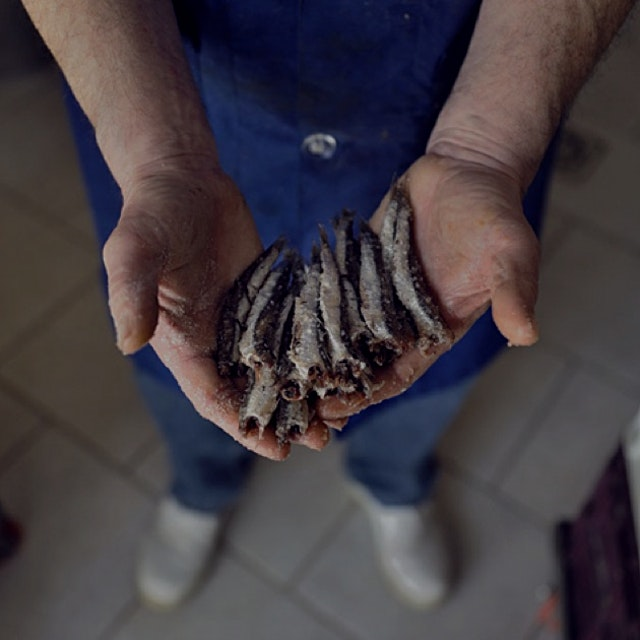 This were fished off the Amalfi Coast! The salt keeps them nice and plump.