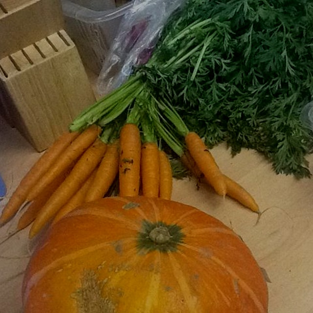 Back in nyc now, but my mumma sent me photos of carrots she bought at a german supermarket chain....