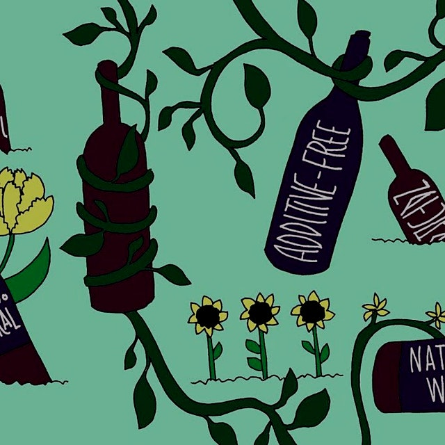 We talk so much about food classifications and labeling, but what about wine? The rules of natura...