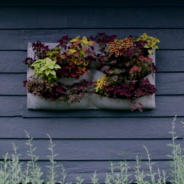 """In this vertical gardening series you will learn how to make your own living wall pouch to insta..."