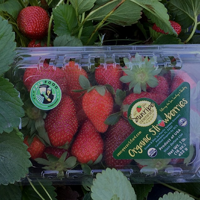 We don't know which Whole Foods will be carrying these berries yet, but FFP strawberries will hit...