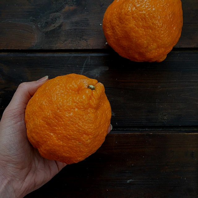 """""New food of the week: Golden Nugget Tangerine!  Notice all the lumpiness! This fruit embraces a..."