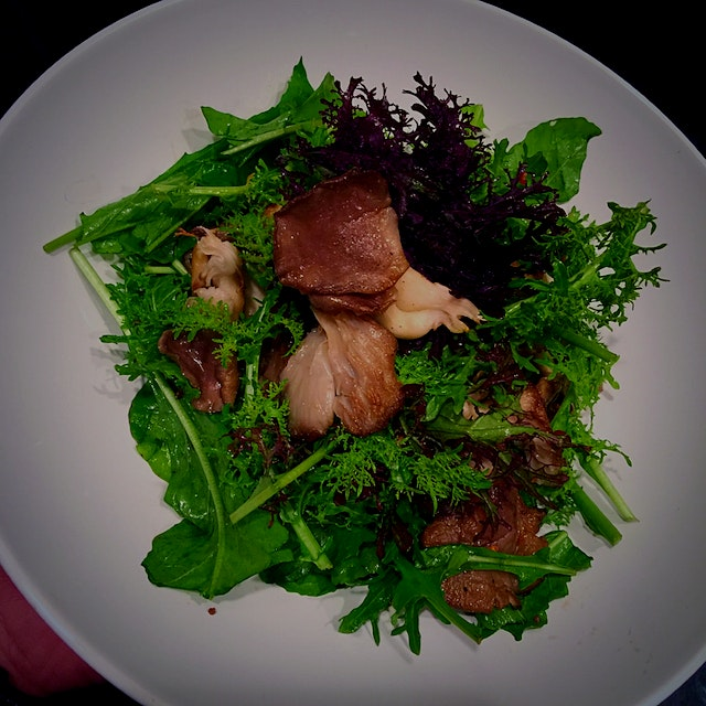 Pan seared Blue Oyster Mushrooms (Ithaca, NY) over Mustard Greens & Arugula tossed with Aged Whit...