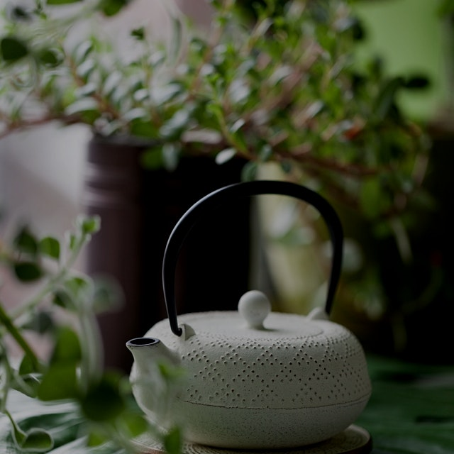 A great way to start the morning is with a fresh pot of tea, handpicked from the garden (lemongra...