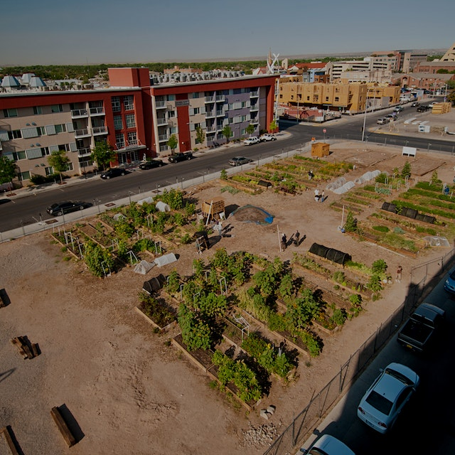 """""""A new report digs deep to find out whether urban farms can feed urban populations."""" #foodnews"""