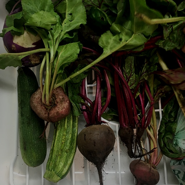 She brought me beets, beet greens (which she recently discovered!), rutabaga, zucchini, and chard...