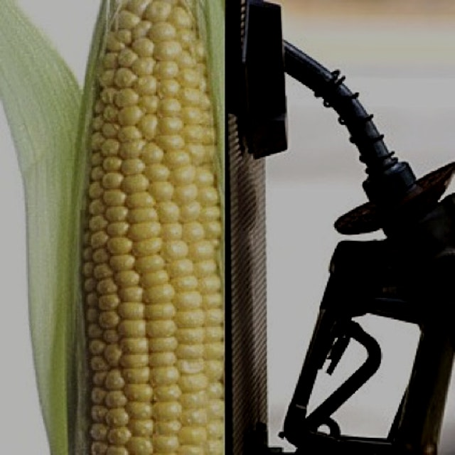 That 40% of our corn crop winds up in gas tanks as ethanol and about 8 bushels of corn is only 22...