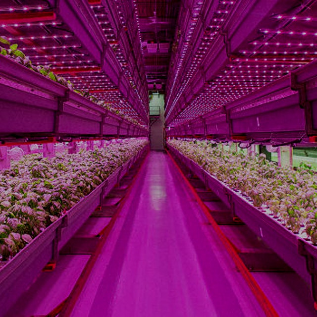 """With a cornucopia of new ag startups, from rooftop greenhouses to high-tech vertical farms, the ..."