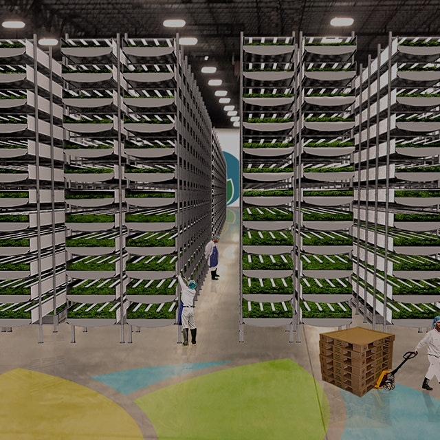 """AeroFarms is on track to produce 2 million pounds of food per year in its 70,000-square-foot fac..."