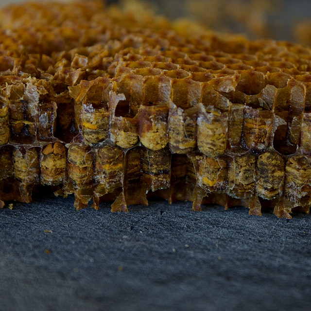 """by Josh Evans