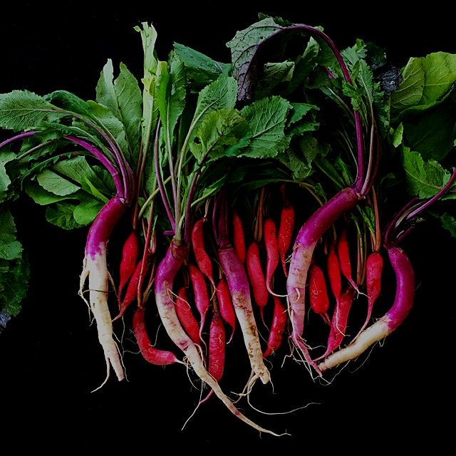 Join my Ugly Produce is Beautiful Campaign on www.UglyProduceIsBeautiful.com and on www.Instagram...