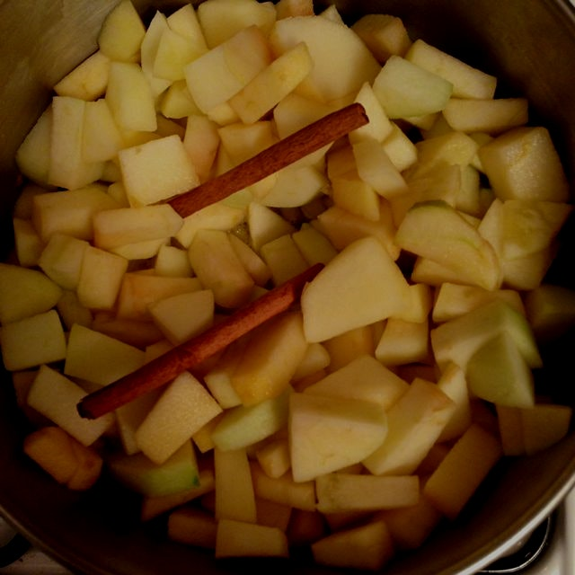 Three ingredient apple sauce: apples, water, cinnamon. Nothing makes the apartment smell better!