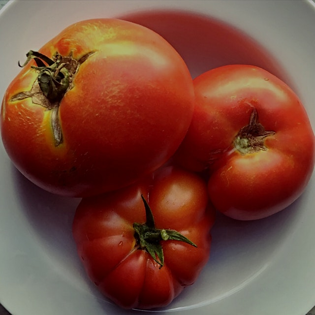 Tomatoes and sunlight. Please excuse my repeat tomato posts, I just can't get over how gorgeous t...