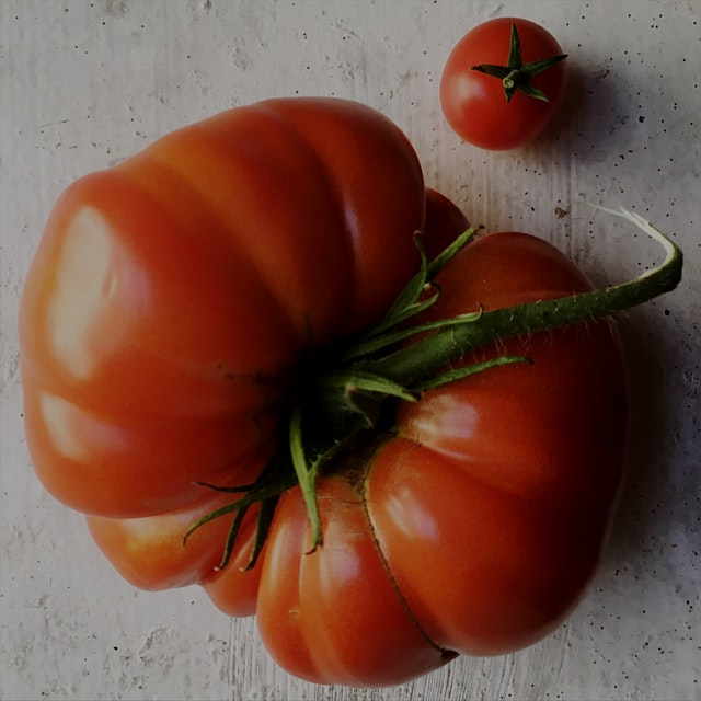 David and Goliath. #auriasmalaysiankitchen #thesamballady #tomatoes #homegrown #brooklyn