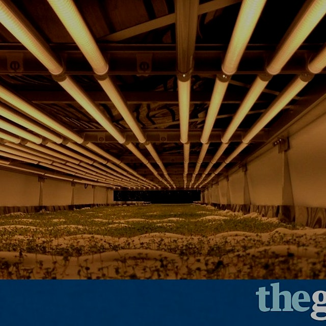 #FoodNews: 'AeroFarms has put $30m into a green revolution that seeks to produce more crops in le...