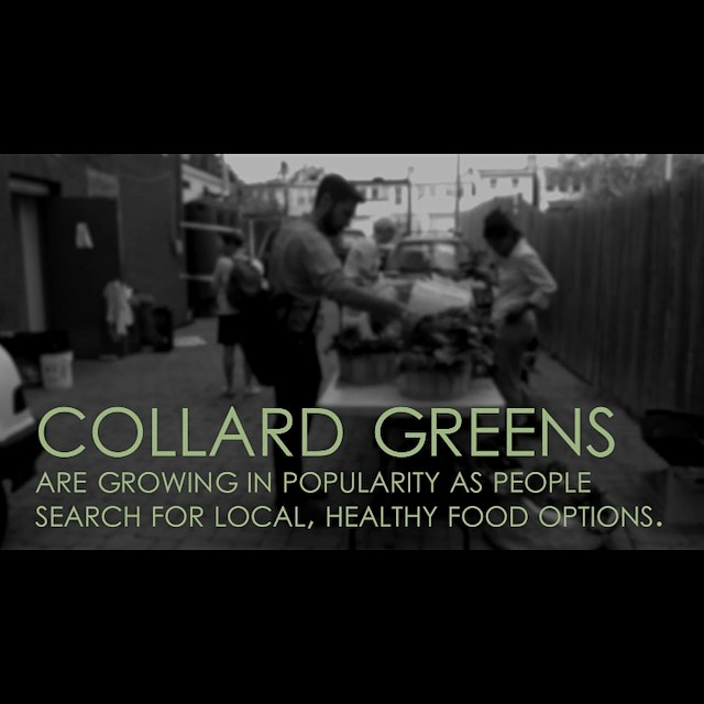 """The Culture of Collards"" is a finalist for SAVEUR Magazine's best food video award. Please vote ..."