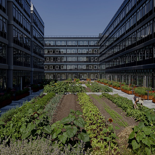 """Rad! """"Wouldn't it be great if all apartment complexes came with an urban farm?"""" #KnowYourFarmer"""
