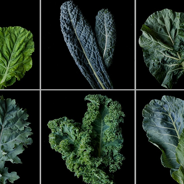 This is an interesting article about tailoring a new version of kale to the American palate, and ...