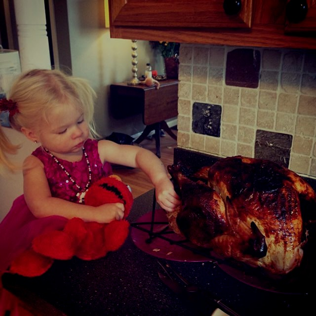 The smallest turkey thief in the house. I mean it's hard to resist a turkey that delicious looking.