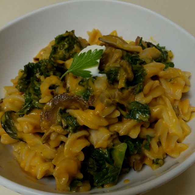 Dinner tonight: Ginger Pumpkin Macaroni with Kale and Mushroom sautee. Dollop of Creme fraiche. #...