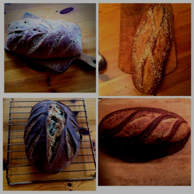 My homemade sourdough breads. Organic. Whole grains. The staff of life.