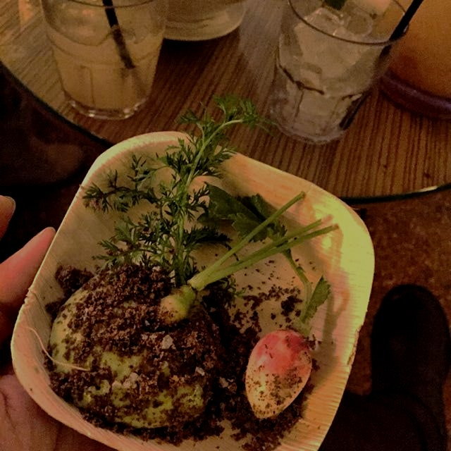 Eat more bugs! Talk and tasting by Dinner By Kear. Creamy veggie dip topped with ground crickets,...