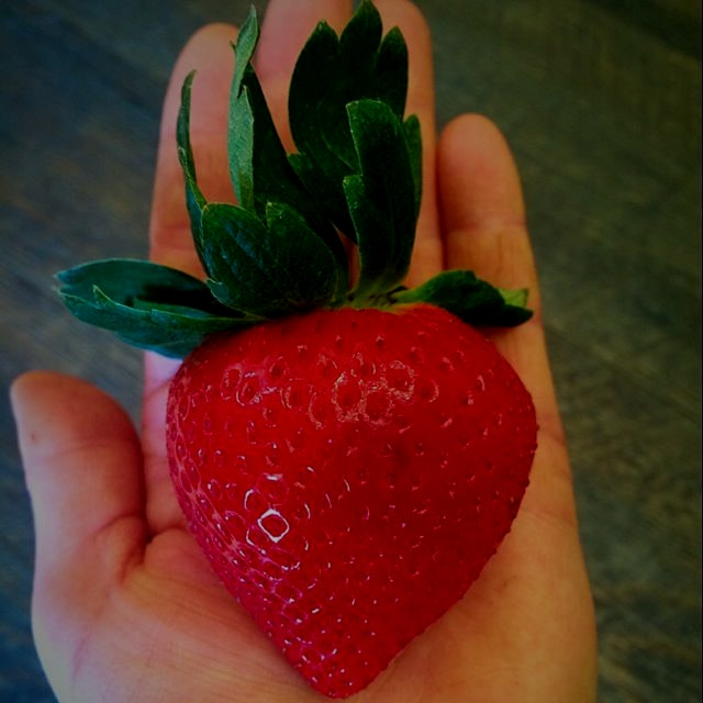 Now THAT'S a strawberry!!!