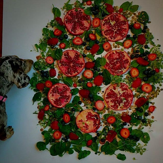 Photo-bombed Pomegrante-salad scape!