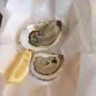 Two lonely oysters Sitting in some ice - at the Ed's Lobster Bar Outpost at Gansevoort Market @BrotherHas