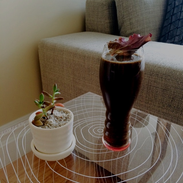 Maqui Berry Smoothie courtesy of Greenblender!