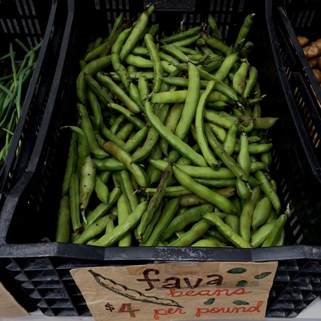 Fava beans are here! Making Fava bean crostinis this weekend! Http://food52.com/recipes/11645-Fav...