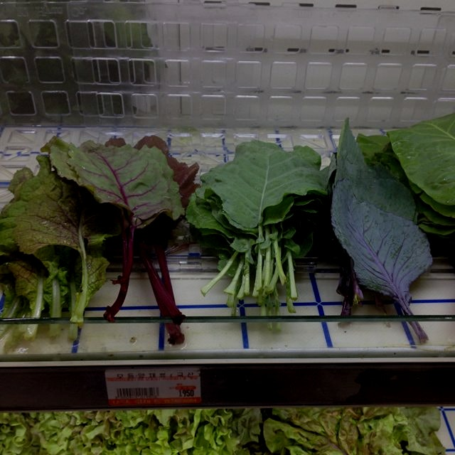 Lovely lettuces at the dream-mart in Jeju!