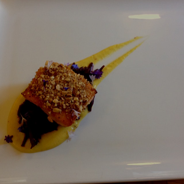 Wonderful wild caught Pacific salmon over a roasted corn purée and braised red cabbage, topped wi...