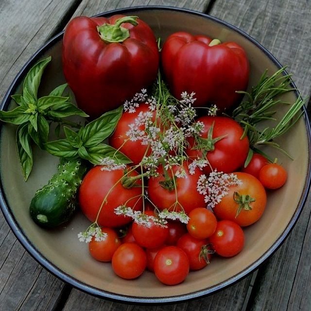Nothing better than a fresh harvest from a friends garden! #rosemary #cilantroflowers #tomatoes #...