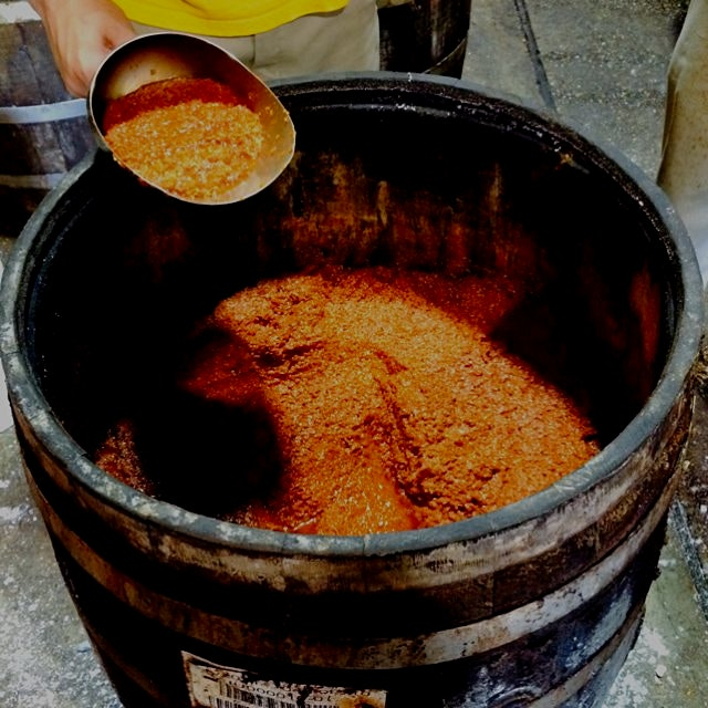 Aged pepper mash on its way to becoming Tabasco at the factory on Avery Island.