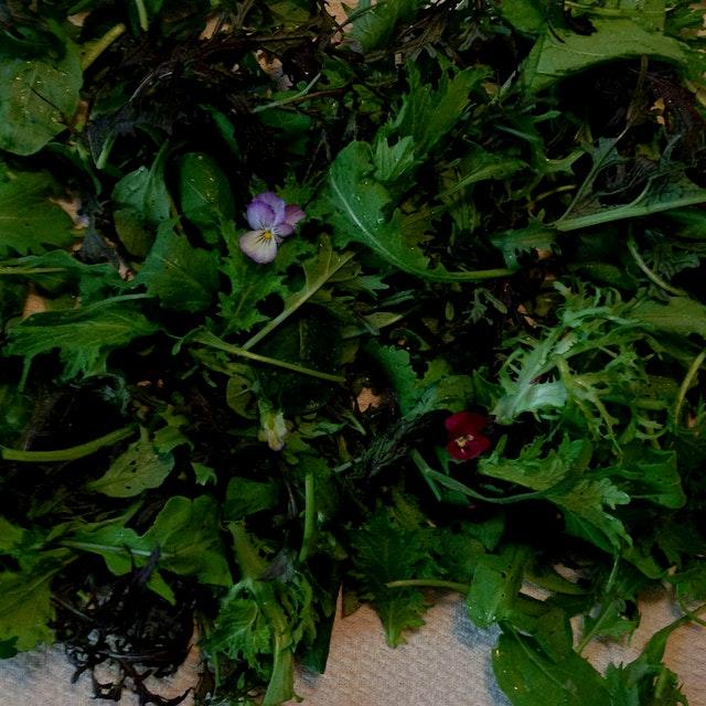 Mini pansies in our greens tonite!