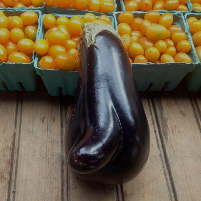 Eggplant #phallic #nature #meta @unsqgreenmarket