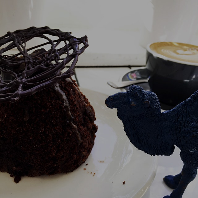 Friday treat! chocolate cake with beets & salted caramel. And bonus camel.