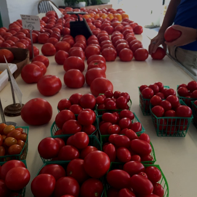 I love the meadows farm stand in Yorktown heights Their tomatoes have the best flavor
