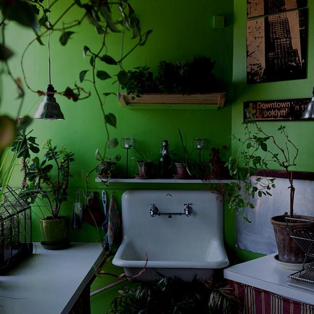 My kitchen-- where all the magic happens. 😋🌱