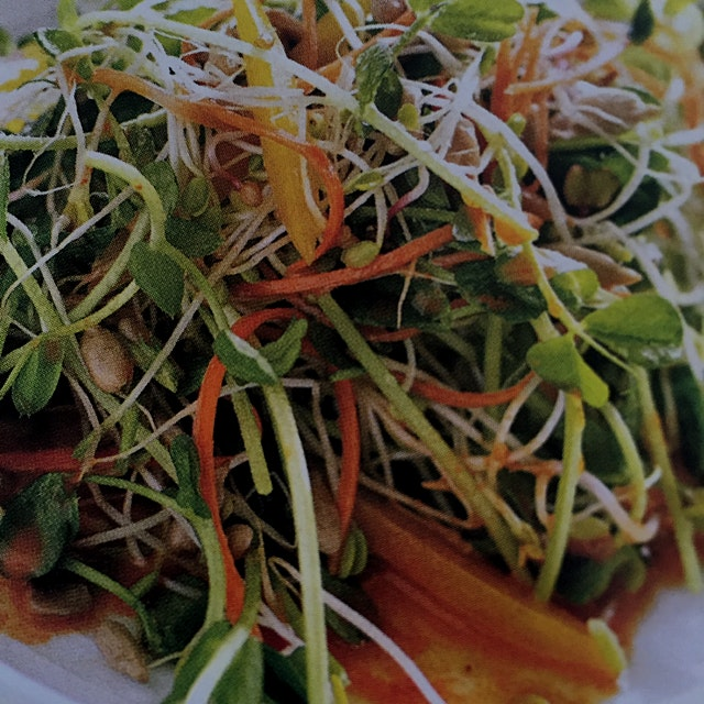 Sunflower Salad with Spicy Carrot Dressing
