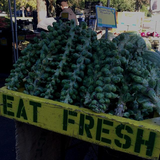 U-Pick Brussels sprouts at Logan Square Market. Delish.