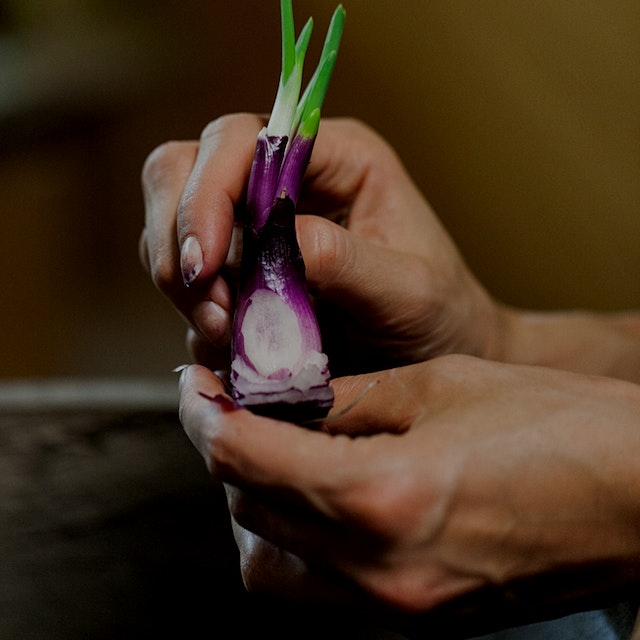 There's No Food Left Behind for #NoFoodWaste November, including this red onion, who decided to s...